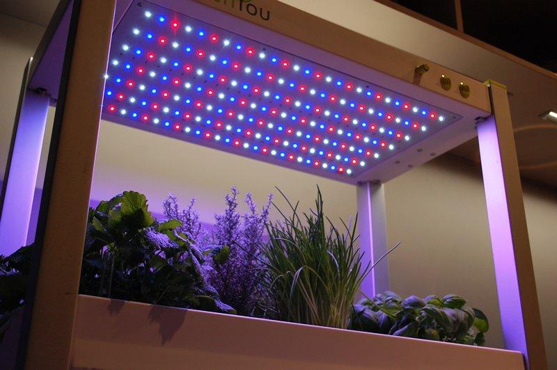 Das Zimmergewächshaus greenUnit mit Sunlight LED Technologie für besseres Pflanzenwachstum